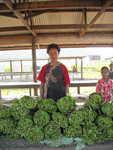 Bele or slippery cabbage for sale at a market in Honiara, Solomon Islands. This traditional vegetable has very high levels of folate, an important nutrient for pregnant and nursing women.