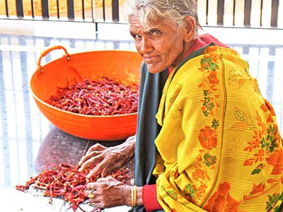 Chili with no or low levels of pesticide residue fetch high prices in India.