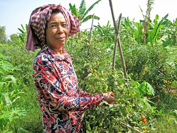 Encouraging women to produce vegetables in home gardens can lead to improved diets and health.