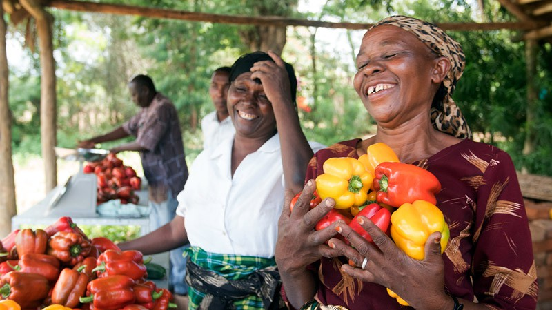 Joshua's mother, Maria, is delighted by the bountiful harvest. The VINESA project helped Joshua and his fellow farmers refurbish a greenhouse for sweet pepper production.