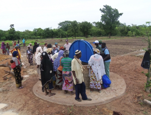 Evaluation of Low-Cost Vegetable Cooling and Storage Technologies in Mali