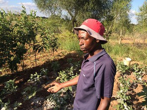 Festus Kyalo, now an experienced garden trainer, plans to plant a full acre of vegetables on his farm.
