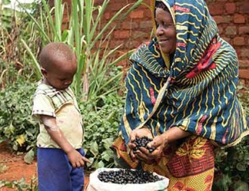 Prize-winning photo promotes home gardens, seed saving in Tanzania