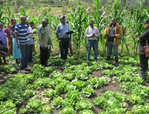 VINESA farmers challenged to exploit their youth as their greatest asset