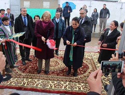 WorldVeg and USAID open commercial greenhouse in Tajikistan