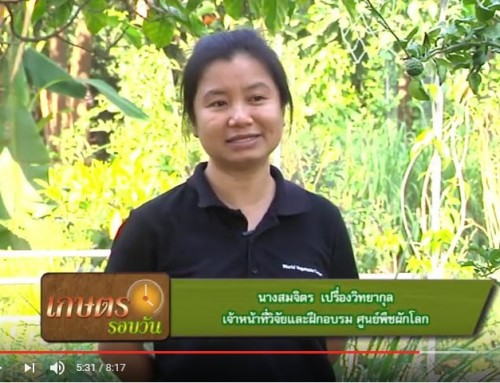Home garden and IPM training with WorldVeg, KU and Miracle Life Foundation