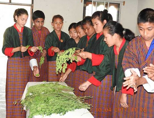 School gardening in Bhutan: Evaluating outcomes and impact
